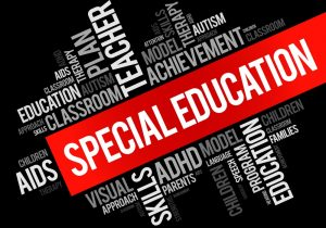 Providing Expert Back to School IEP Support Services